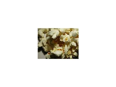 Photo Small Popcorn 2 Food