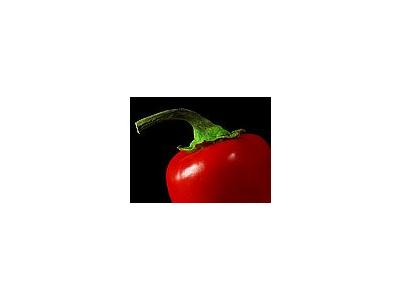Photo Small Pepper Food