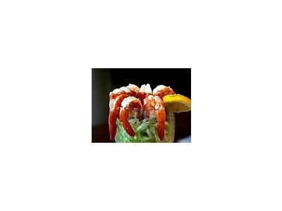 Photo Small Shrimp Food