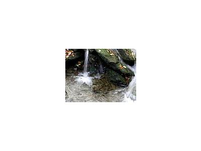 Photo Small Stream 4 Landscape