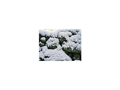 Photo Small Powder Snow On Stone Wall Landscape
