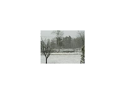 Photo Small Snowfall Landscape