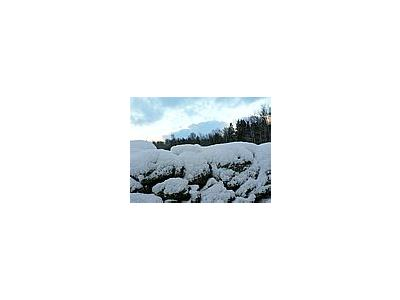 Photo Small Stone Wall With Snow Landscape