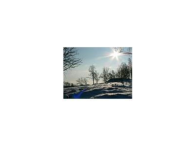 Photo Small Sunshine On Snowy Tree Hill Landscape