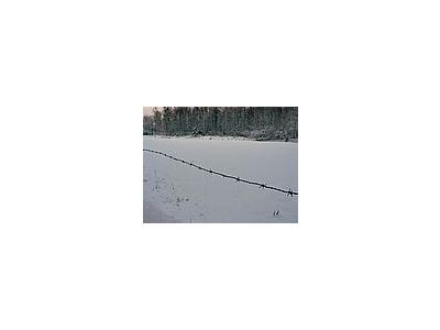 Photo Small Wire Fence 2 Landscape