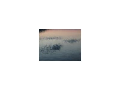 Photo Small Lake 34 Landscape