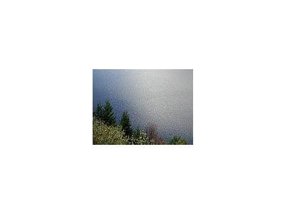 Photo Small Lake 6 Landscape