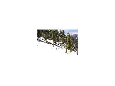 Photo Small Snow Landscape