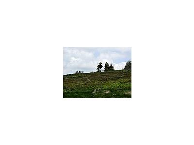 Photo Small Mountain 103 Landscape