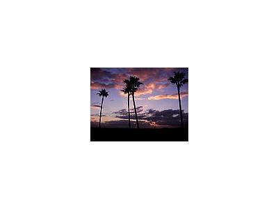 Photo Small Sunrise Landscape
