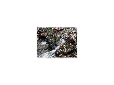 Photo Small Stream 1 Landscape