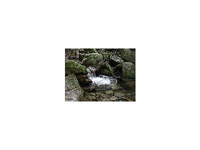 Photo Small Stream 10 Landscape