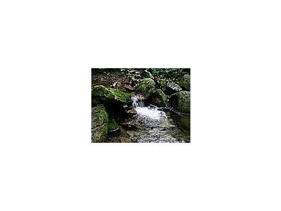 Photo Small Stream 16 Landscape