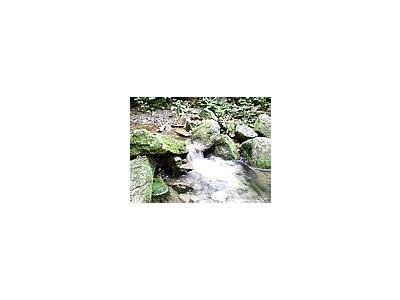 Photo Small Stream 19 Landscape
