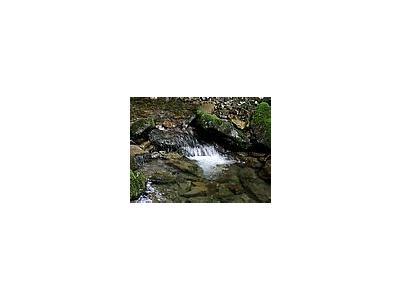 Photo Small Stream 24 Landscape