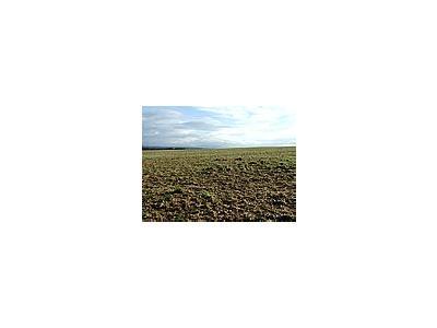Photo Small Field 3 Landscape