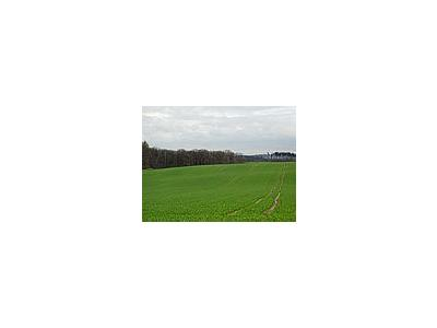 Photo Small Field 31 Landscape