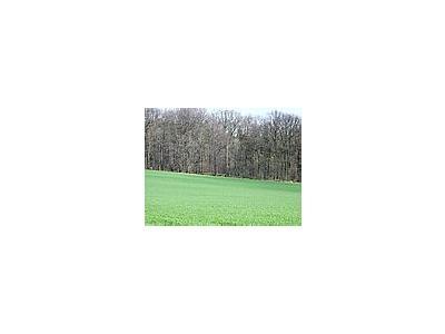 Photo Small Field 34 Landscape