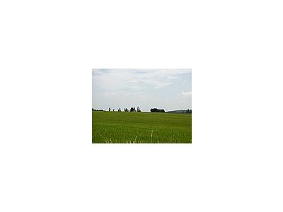 Photo Small Field 46 Landscape