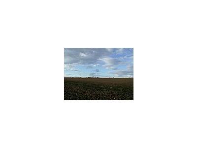 Photo Small Field 5 Landscape