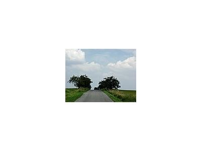 Photo Small Road 3 Landscape