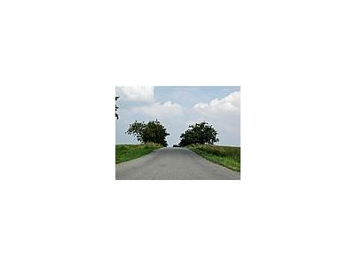 Photo Small Road 4 Landscape