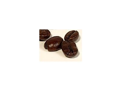 Photo Small Coffee Beans 2 Object