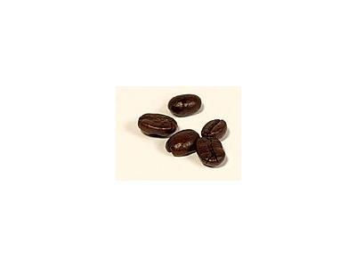 Photo Small Coffee Beans 3 Object