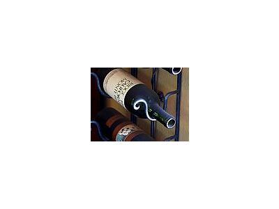 Photo Small Wine Bottles Object