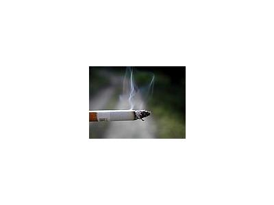 Photo Small Cigaret 7 Object