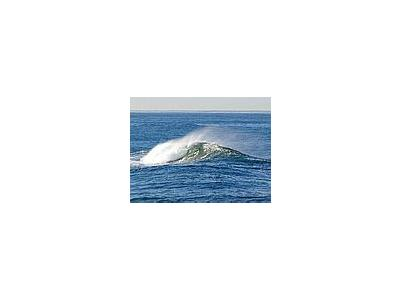 Photo Small Ocean Wave Ocean