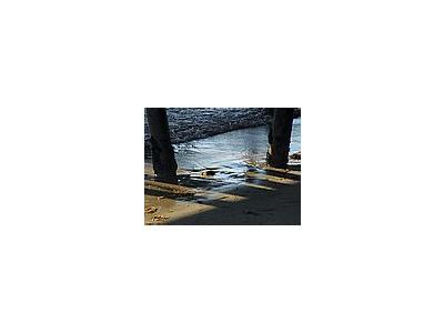 Photo Small Pier Ocean