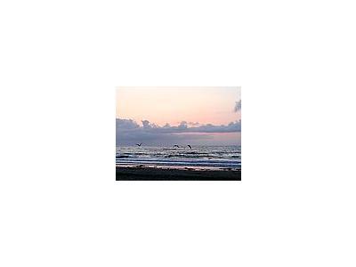 Photo Small Sunset 4 Ocean
