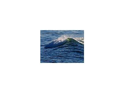 Photo Small Wave Ocean