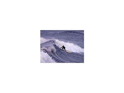 Photo Small Surfing 6 People