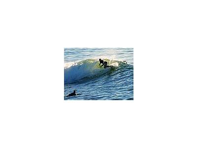 Photo Small Surfing 7 People