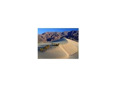 Photo Small Death Valley Sand Dunes Travel
