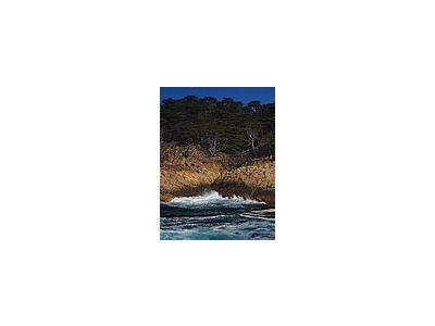 Photo Small Point Lobos Travel