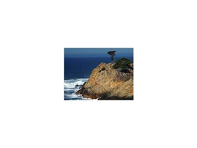 Photo Small Point Lobos 2 Travel