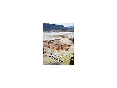 Photo Small Mammoth Hot Springs 4 Travel
