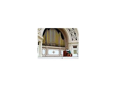 Photo Small Organ 2 Travel