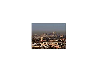 Photo Small Phoenix Skyline Travel
