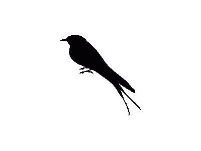 Uccello Profilo 02 Archi 01 Animal