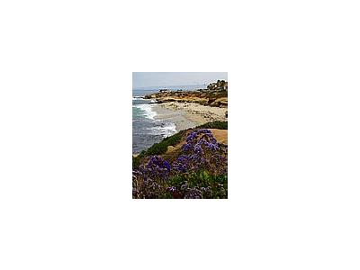 Photo Small La Jolla Cove 12 Travel