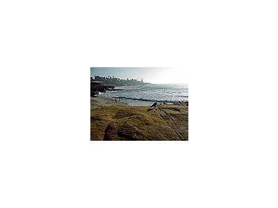 Photo Small La Jolla Cove 6 Travel