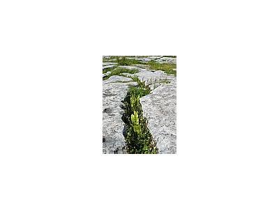 Photo Small The Burren Travel