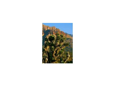 Photo Small Red Rocks 5 Travel