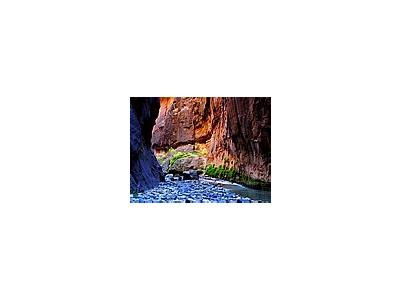 Photo Small Zion Narrows 11 Travel