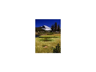 Photo Small Yosemite National Park Travel