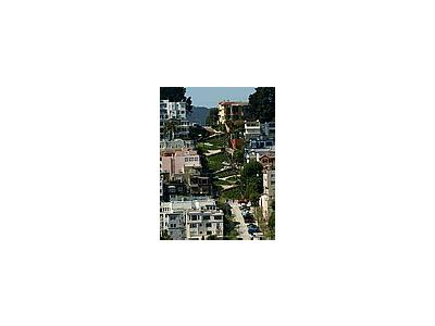 Photo Small Lombard Street Travel